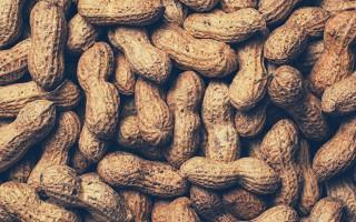 Можно ли арахис (жареный, соленый, арахисовую пасту) при грудном вскармливании в первый и последующие месяца?