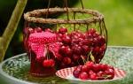 Можно ли есть вишневое варенье маме при грудном вскармливании?