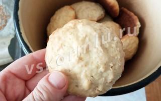 Овсяное печенье домашнее без добавок, которое разрешено при ГВ с 2-х месяцев