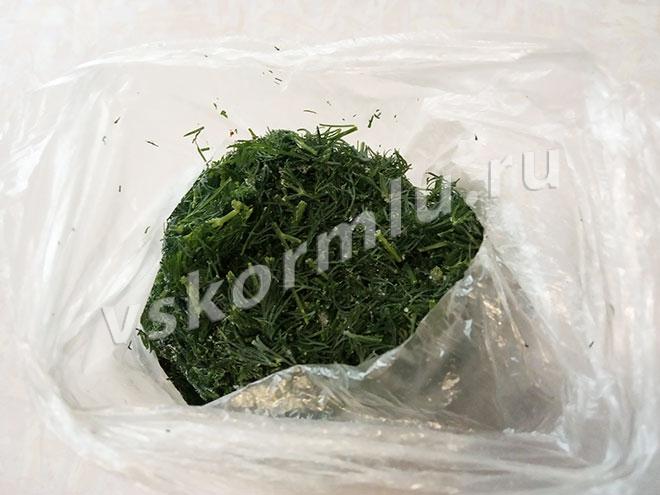 Нарезанный укроп, сложенный в пищевой пакет для заморозки на зиму