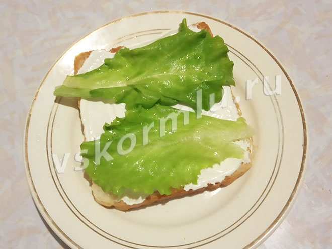 Листья салата на бутерброде