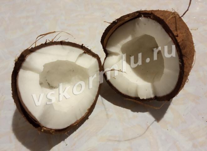 Кокос - экзотический орех, полезный для мамы и ребенка при ГВ