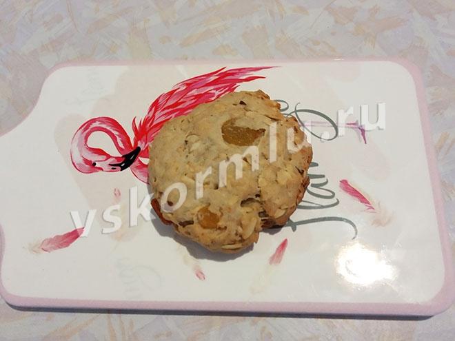 Овсяное печенье на фруктозе принесет кормящей маме пользу и радость если есть его в умеренных количествах