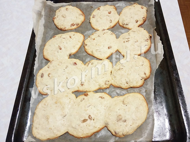 Печенье овсяное с изюмом для кормящей мамы