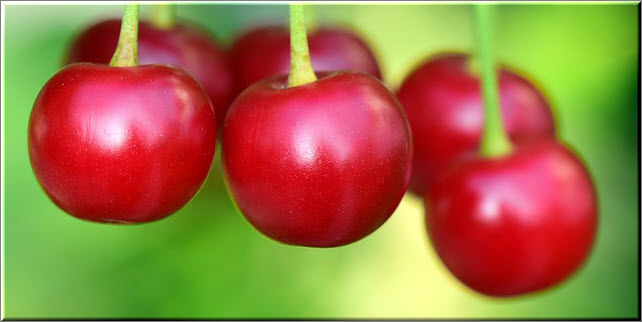 Введение в рацион кормящей мамы вишневого варенья сопрежено с высоким риском появления аллергической реакции у грудничка. Поэтому вводите такое варенье в меню позже других сортов и с особой осторожностью