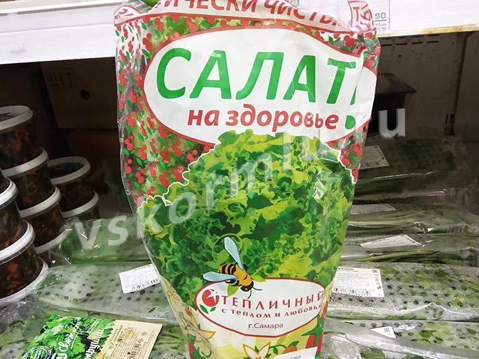Зеленый листовой салат